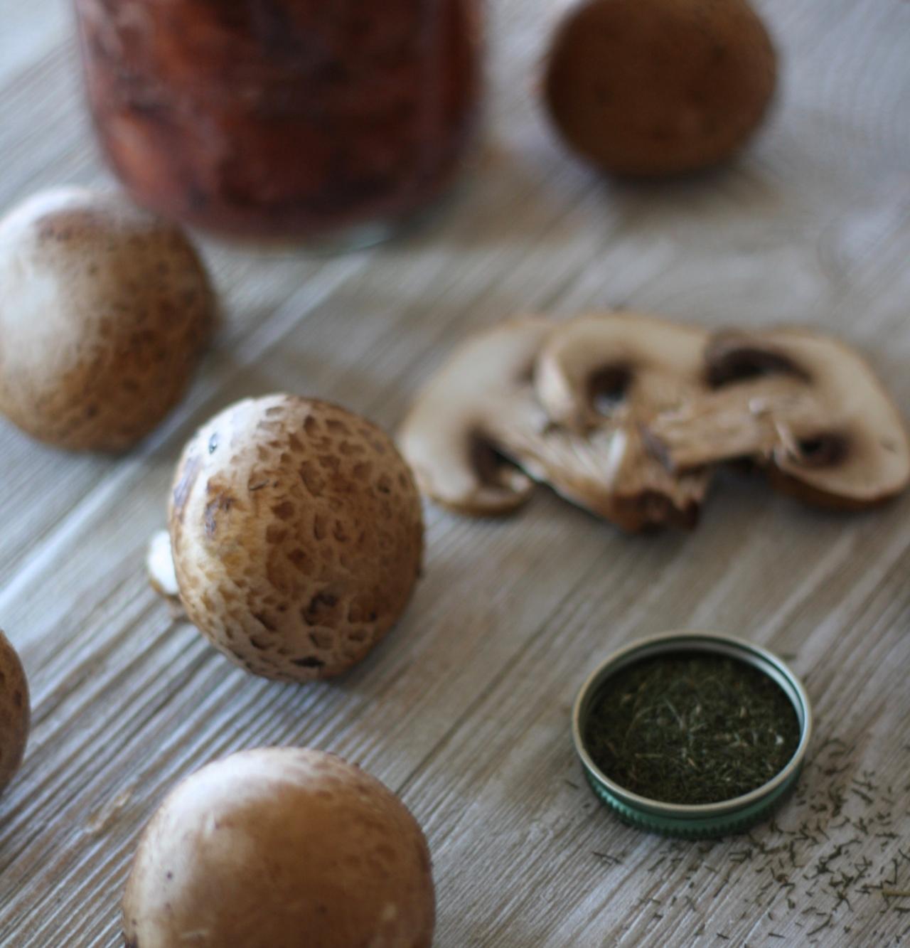 Moose and Mushrooms