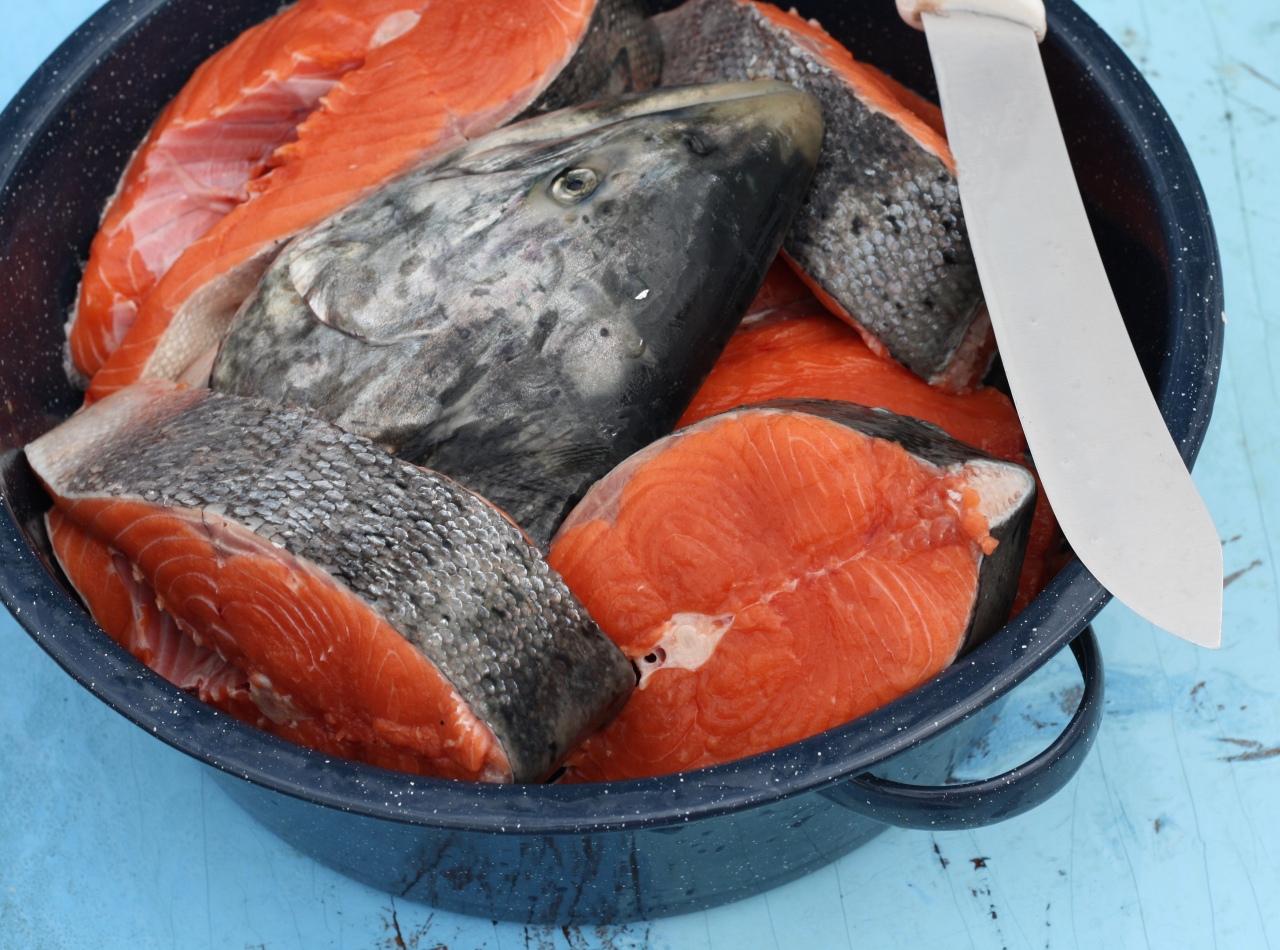 King Salmon Steaks
