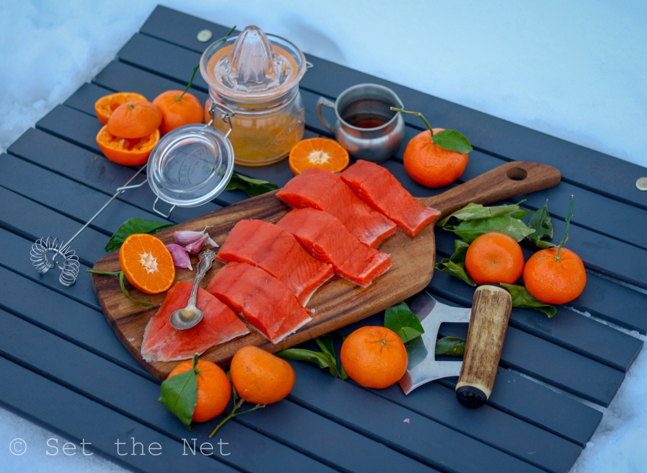 Citrus Maple Salmon Landscape 3.JPG